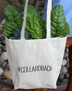Collard Back Ad