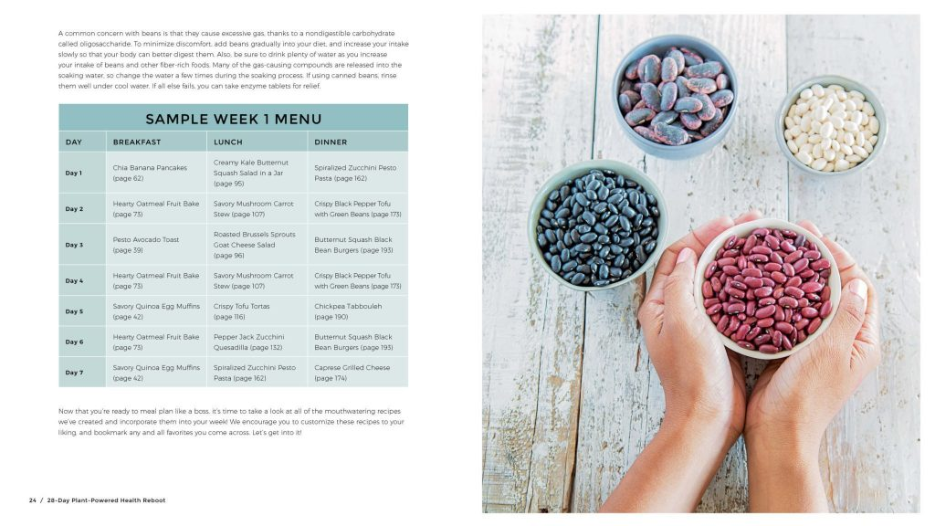 The 28 Day Plant-Powered Cookbook